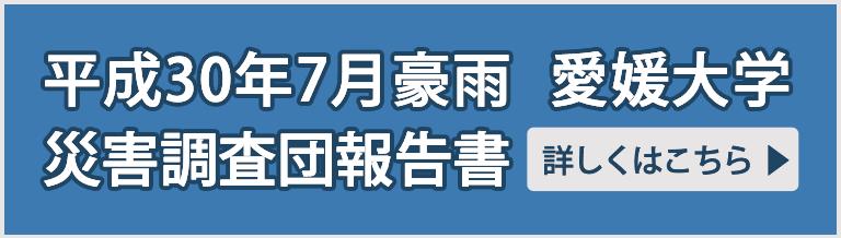 平成30年7月豪雨 愛媛大学災害調査団報告書
